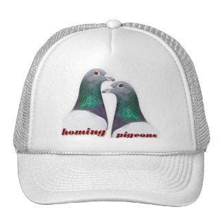 Pareja de palomas mensajeras gorras de camionero