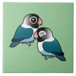 Pares adorables enmascarados azul del Lovebird Azulejos