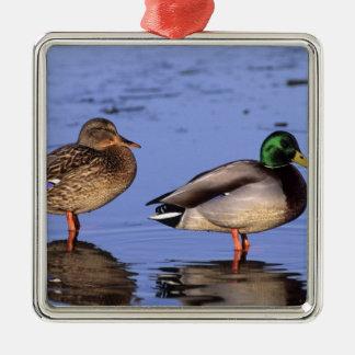Pares Canadá Norteamérica del pato silvestre Ornamento De Navidad