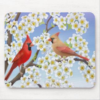 Pares cardinales en el árbol floreciente Mousepad