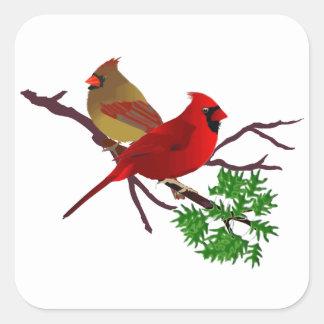 Pares cardinales en una rama pegatina cuadrada