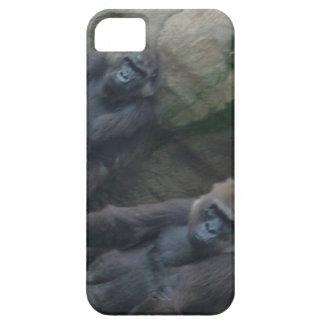 Pares curiosos de primates iPhone 5 coberturas