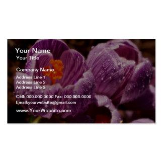 Pares de azafranes cubiertas de rocio, flores del  plantillas de tarjetas personales