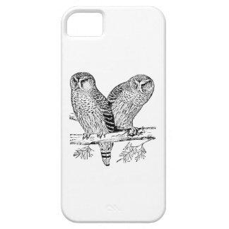 Pares de búhos iPhone 5 cárcasas