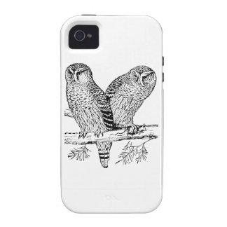 Pares de búhos iPhone 4 fundas