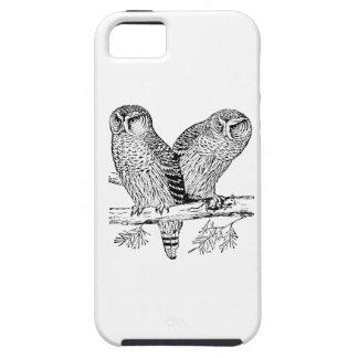 Pares de búhos iPhone 5 fundas
