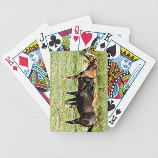 Pares de caballos baraja cartas de poker