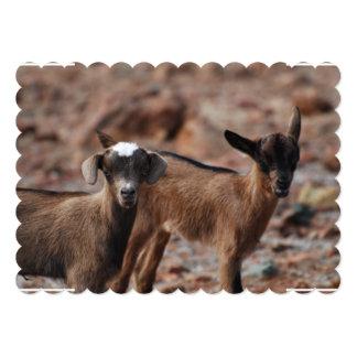 Pares de cabras comunicado personal