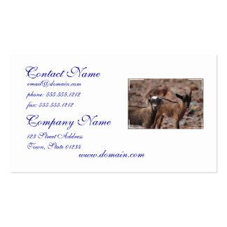 Pares de cabras tarjetas de visita