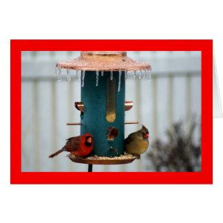 Pares de cardenales en BirdFeeder helado Tarjeta Pequeña