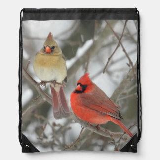 Pares de cardenales septentrionales