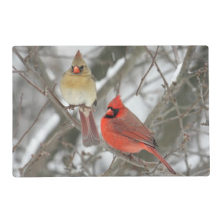 Pares de cardenales septentrionales tapete individual