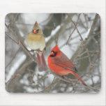 Pares de cardenales septentrionales tapete de raton