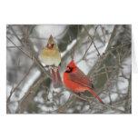 Pares de cardenales septentrionales tarjetón