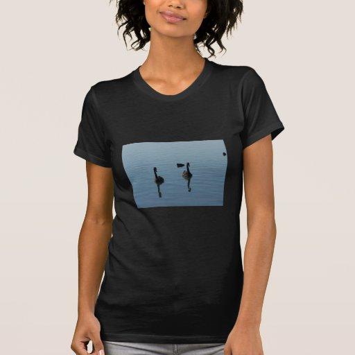 Pares de cisnes negros que nadan en agua con allí tee shirt