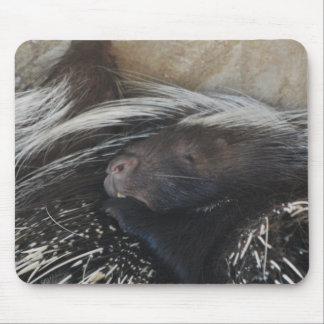 Pares de cojín de ratón de los puercos espines tapetes de raton