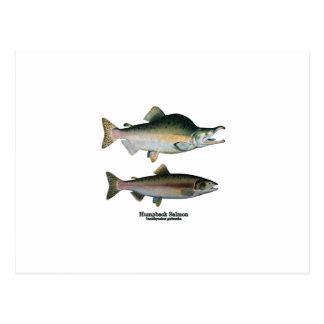 Pares de color salmón del Humpback (que frezan Tarjetas Postales