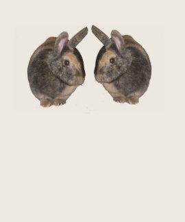 Pares de conejos en la camiseta