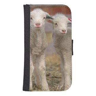 Pares de corderos comerciales de Targhee Funda Tipo Cartera Para Galaxy S4