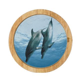 Pares de delfínes