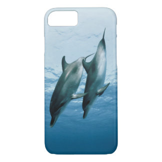 Pares de delfínes funda iPhone 7