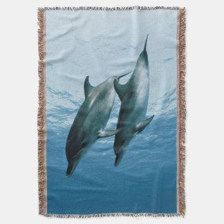 Pares de delfínes manta