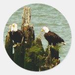 Pares de Eagles Pegatinas