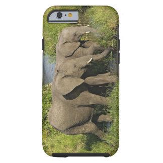 Pares de elefantes africanos que alimentan, Masai Funda De iPhone 6 Tough