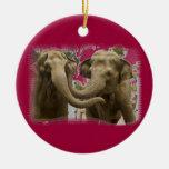 Pares de elefantes rojos