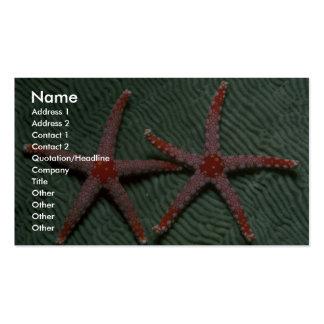 Pares de estrellas de mar del bastón de caramelo d tarjetas de visita