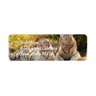 Pares de etiquetas de correo blancas de los tigres etiquetas de remite