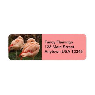 Pares de flamencos rosados etiqueta de remite