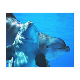Pares de galería de imágenes curiosa de los delfín lona estirada galerias