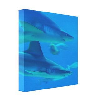 Pares de impresión de la lona de los tiburones lona envuelta para galerias