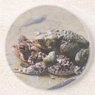Pares de invitaciones de las ranas posavaso para bebida
