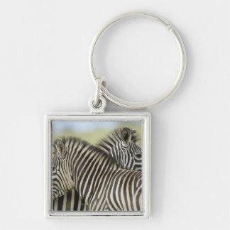 Pares de la cebra de los llanos (quagga del Equus) Llavero Personalizado