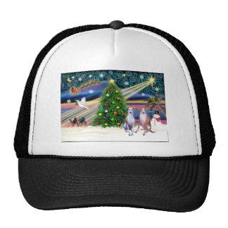 Pares de la Magia-Whippet de Navidad Gorros Bordados