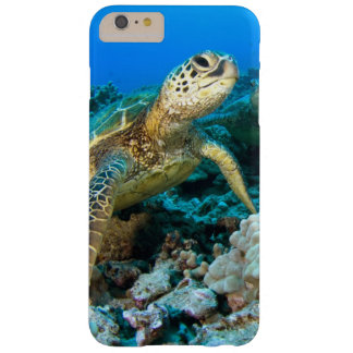Pares de la tortuga funda para iPhone 6 plus barely there