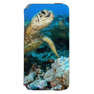 Pares de la tortuga funda billetera para iPhone 6 watson