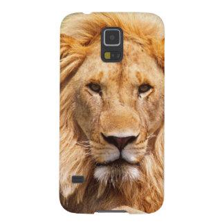 Pares de leones africanos, Panthera leo, Tanzania Carcasa Galaxy S5