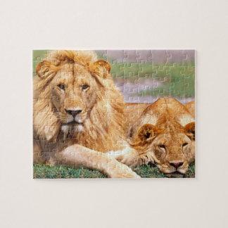 Pares de leones africanos, Panthera leo, Tanzania Puzzles Con Fotos
