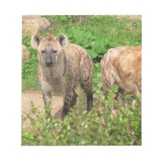 Pares de libreta de los Hyenas Blocs De Notas