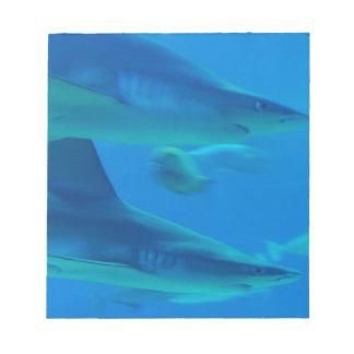 Pares de libreta de los tiburones libretas para notas