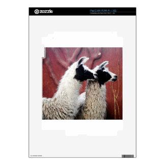 Pares de llamas iPad 2 skin