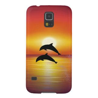 Pares de los delfínes de la puesta del sol del océ