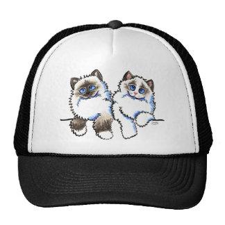 Pares de los gatos de Ragdoll de Apagado-Correo Ar Gorras De Camionero