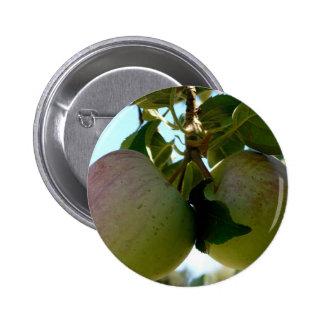 Pares de manzanas pin redondo de 2 pulgadas