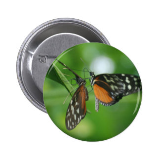 Pares de mariposas pin