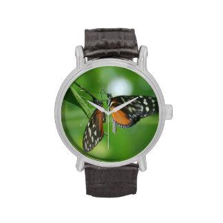 Pares de mariposas relojes de mano