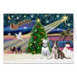 Pares de Navidad Magia-Bull Terrier Tarjetón